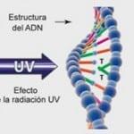 La radiación ultravioleta (UV) como método superior de desinfección de aguas microbiológicamente contaminadas