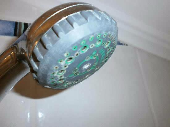 Cal en la ducha